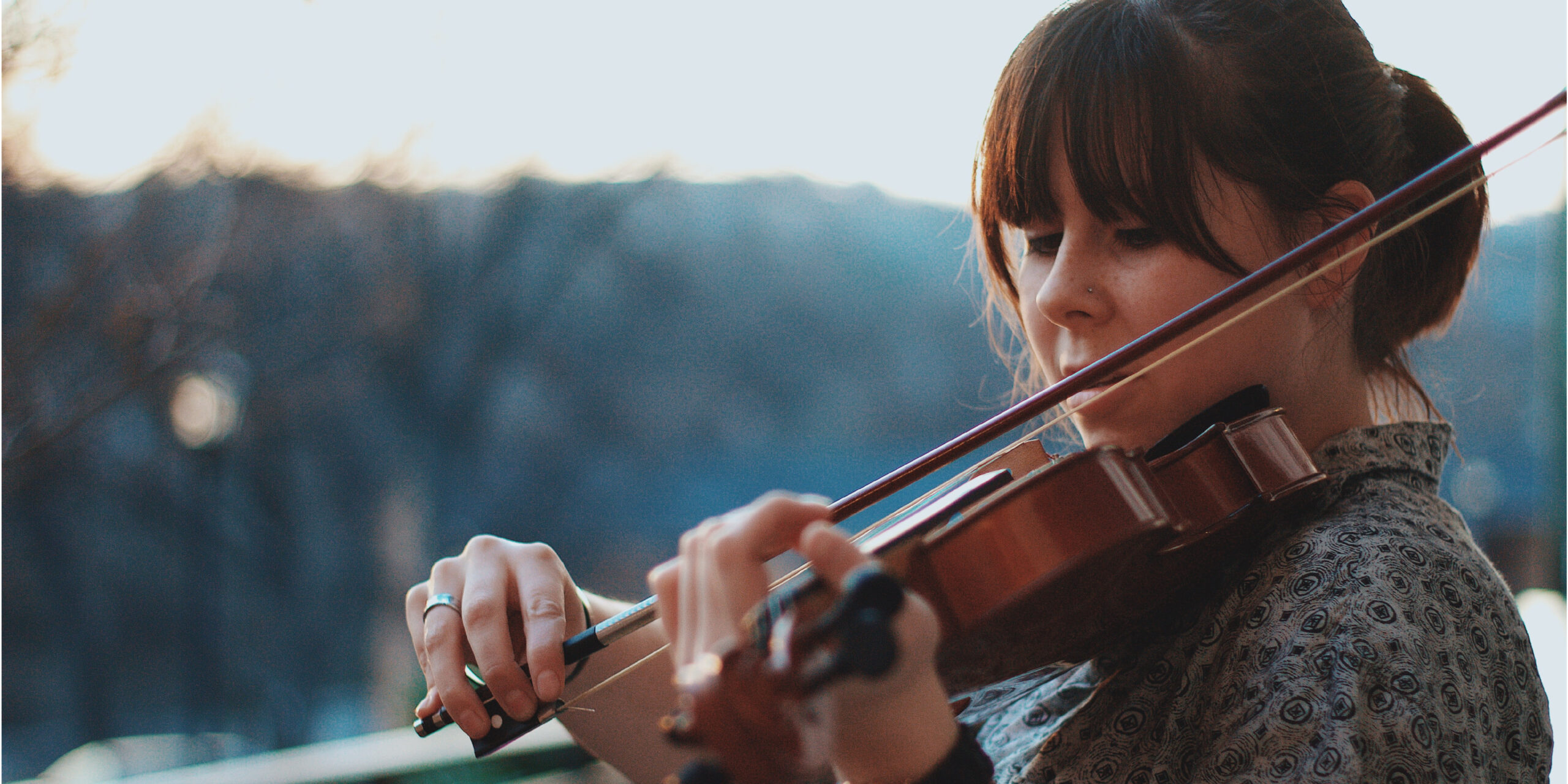Differences between Fiddle and Violin